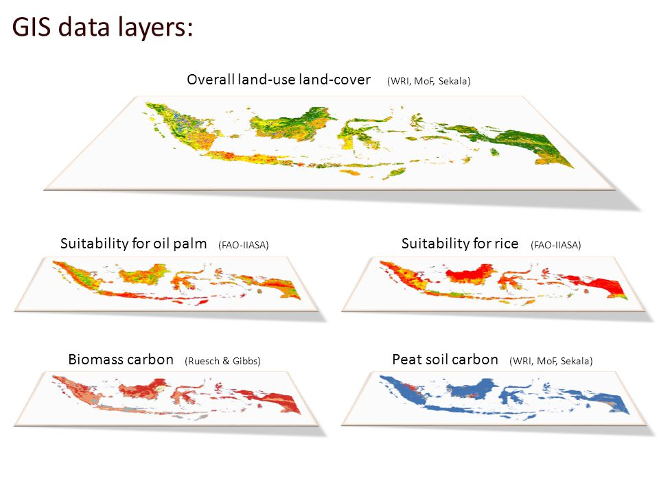 Suitability for rice (FAO-IIASA) Suitability for oil palm (FAO-IIASA) Overall land-use land-cover (WRI, MoF, Sekala) Biomass carbon (Ruesch & Gibbs) Peat soil carbon (WRI, MoF, Sekala) GIS data layers:
