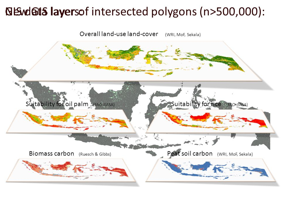 Suitability for rice (FAO-IIASA) Suitability for oil palm (FAO-IIASA) Overall land-use land-cover (WRI, MoF, Sekala) Biomass carbon (Ruesch & Gibbs) Peat soil carbon (WRI, MoF, Sekala) GIS data layers:New GIS layer of intersected polygons (n>500,000):