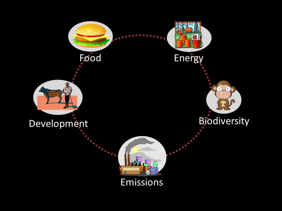 Food Development Biodiversity Energy Emissions