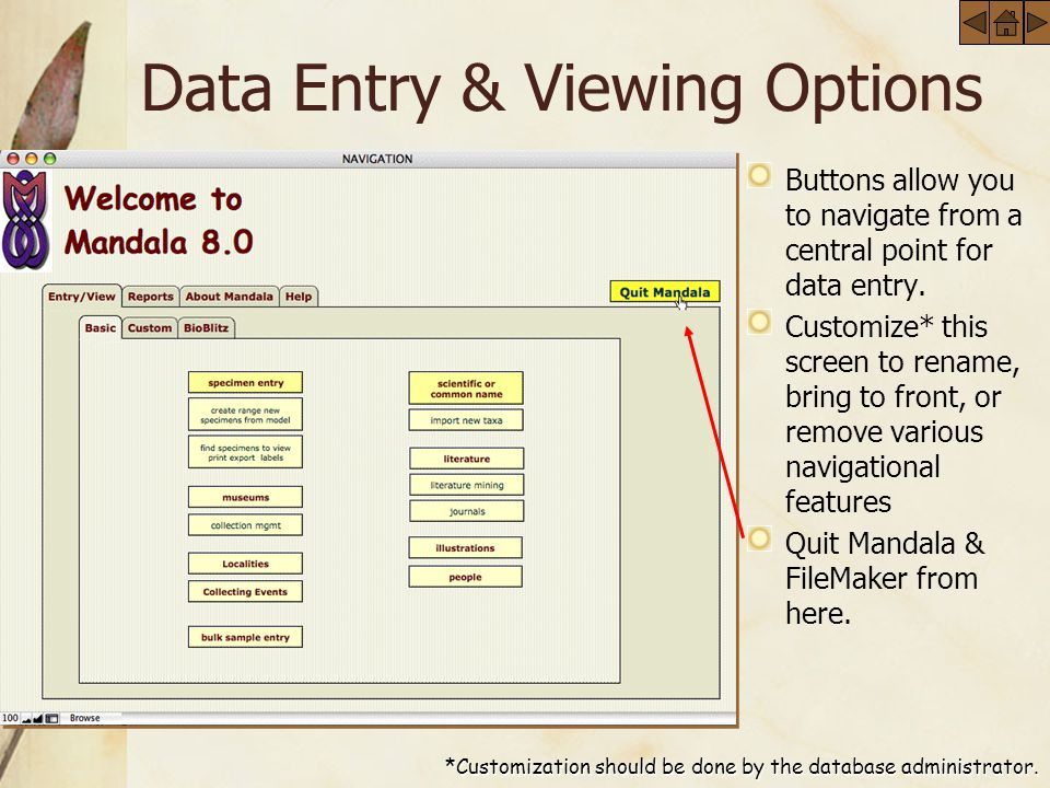 Data Entry & Viewing Options Buttons allow you to navigate from a central point for data entry.