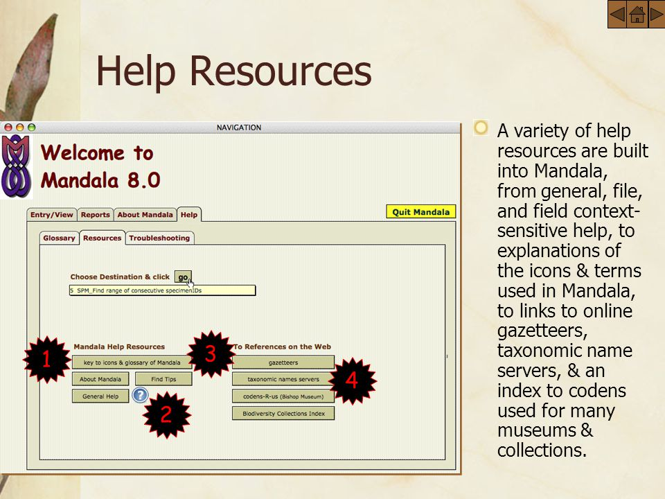 Help Resources A variety of help resources are built into Mandala, from general, file, and field context- sensitive help, to explanations of the icons & terms used in Mandala, to links to online gazetteers, taxonomic name servers, & an index to codens used for many museums & collections.