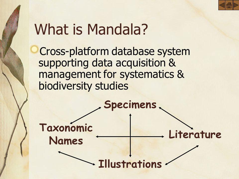 What is Mandala.