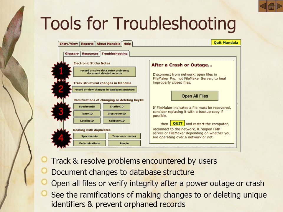 Tools for Troubleshooting Track & resolve problems encountered by users Document changes to database structure Open all files or verify integrity after a power outage or crash See the ramifications of making changes to or deleting unique identifiers & prevent orphaned records 1 2 3 4