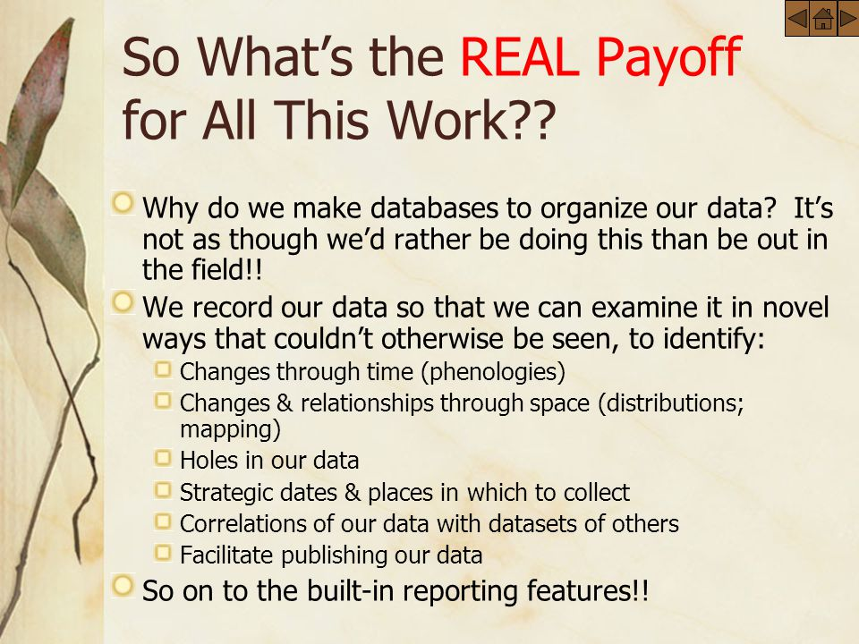 So Whats the REAL Payoff for All This Work . Why do we make databases to organize our data.