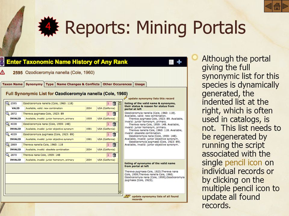 Reports: Mining Portals Although the portal giving the full synonymic list for this species is dynamically generated, the indented list at the right, which is often used in catalogs, is not.