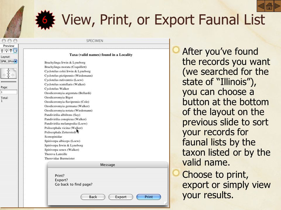 View, Print, or Export Faunal List After youve found the records you want (we searched for the state of Illinois), you can choose a button at the bottom of the layout on the previous slide to sort your records for faunal lists by the taxon listed or by the valid name.
