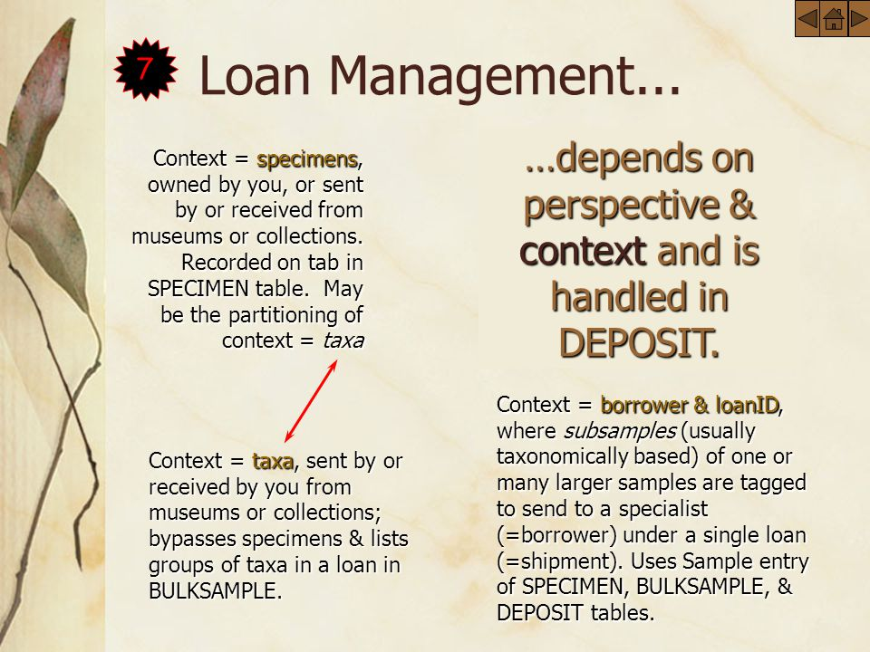 Loan Management... …depends on perspective & context and is handled in DEPOSIT.