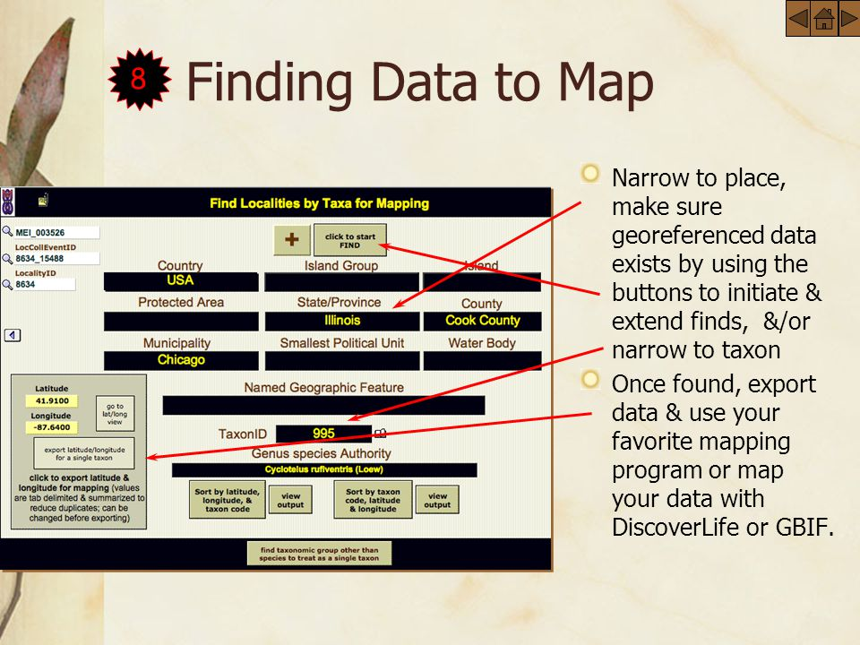 Finding Data to Map Narrow to place, make sure georeferenced data exists by using the buttons to initiate & extend finds, &/or narrow to taxon Once found, export data & use your favorite mapping program or map your data with DiscoverLife or GBIF.
