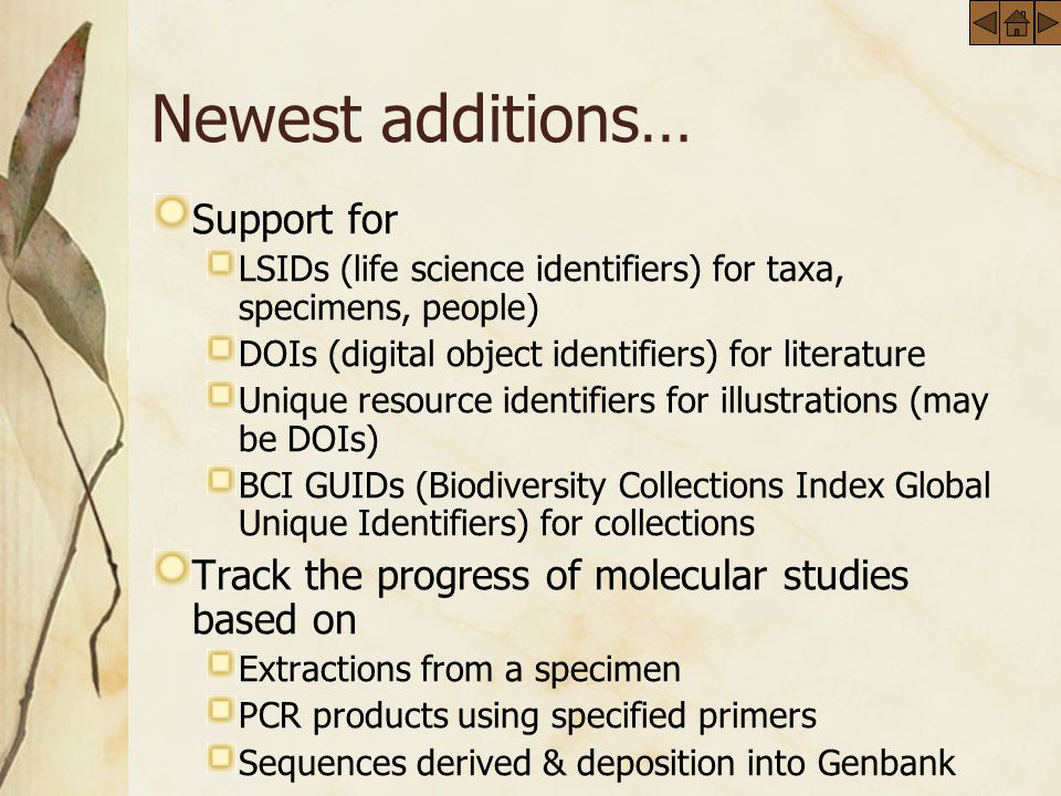 Newest additions… Support for LSIDs (life science identifiers) for taxa, specimens, people) DOIs (digital object identifiers) for literature Unique resource identifiers for illustrations (may be DOIs) BCI GUIDs (Biodiversity Collections Index Global Unique Identifiers) for collections Track the progress of molecular studies based on Extractions from a specimen PCR products using specified primers Sequences derived & deposition into Genbank