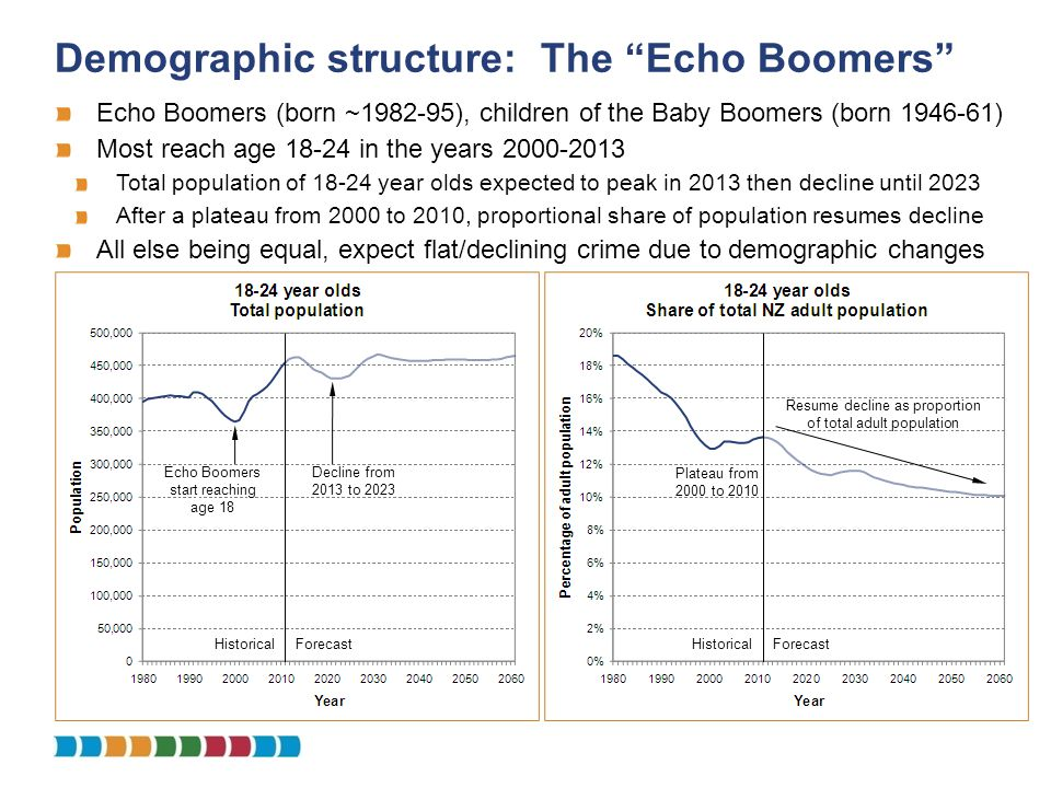 Demographic structure: The Echo Boomers Echo Boomers (born ~1982-95), children of the Baby Boomers (born 1946-61) Most reach age 18-24 in the years 20