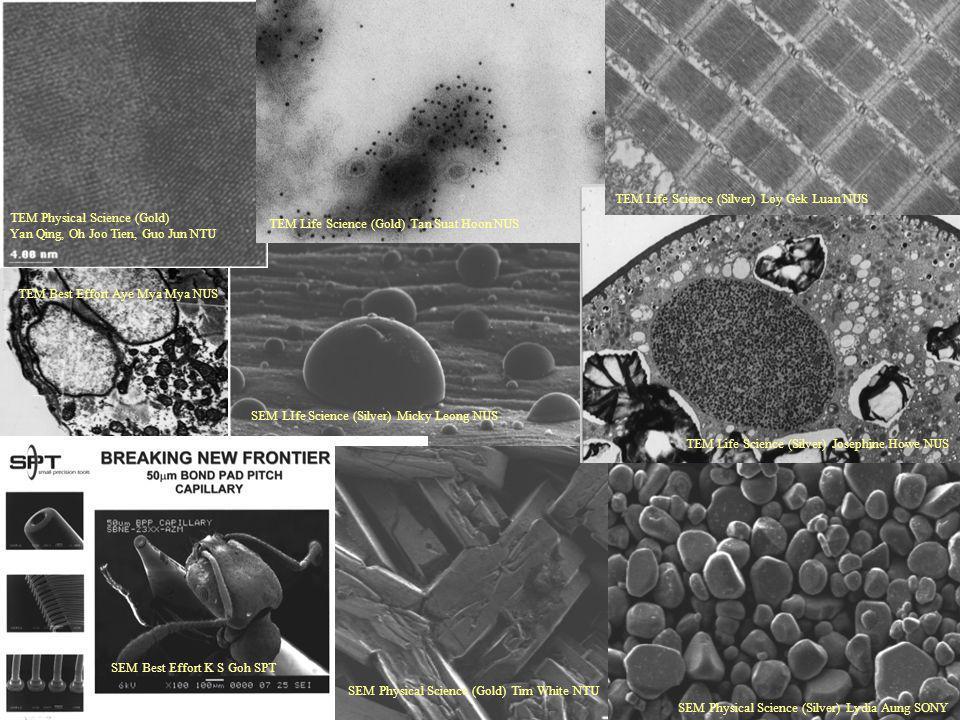 TEM Physical Science (Gold) Yan Qing, Oh Joo Tien, Guo Jun NTU TEM Life Science (Gold) Tan Suat Hoon NUS TEM Life Science (Silver) Loy Gek Luan NUS SE