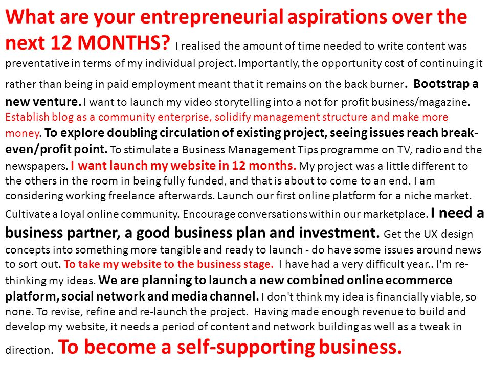 What are your entrepreneurial aspirations over the next 12 MONTHS.