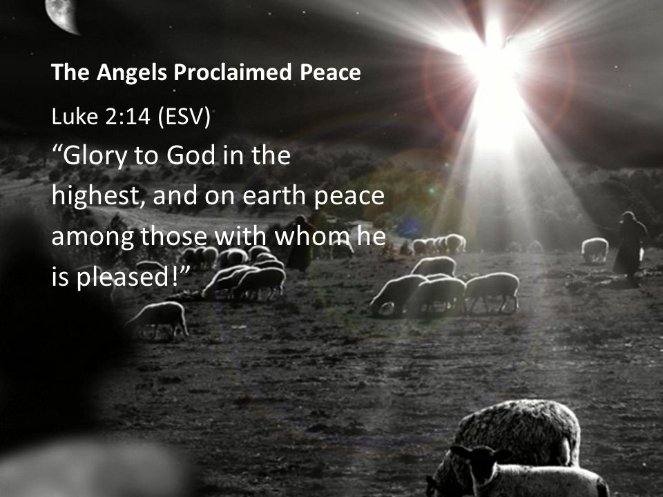 The Angels Proclaimed Peace Luke 2:14 (ESV) Glory to God in the highest, and on earth peace among those with whom he is pleased!