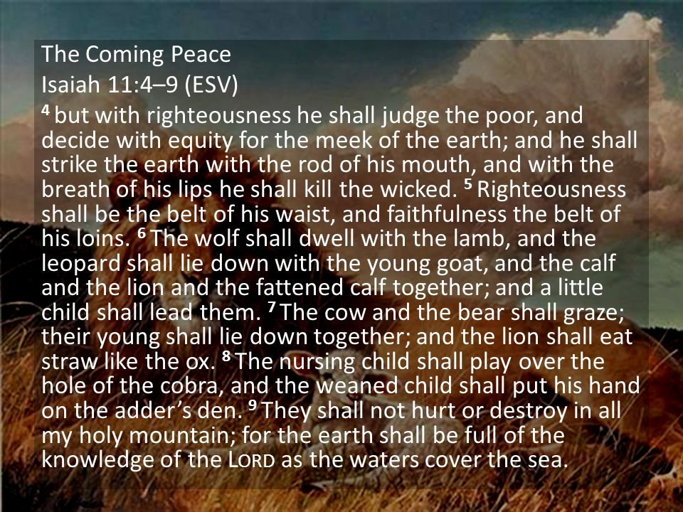 The Coming Peace Isaiah 11:4–9 (ESV) 4 but with righteousness he shall judge the poor, and decide with equity for the meek of the earth; and he shall strike the earth with the rod of his mouth, and with the breath of his lips he shall kill the wicked.