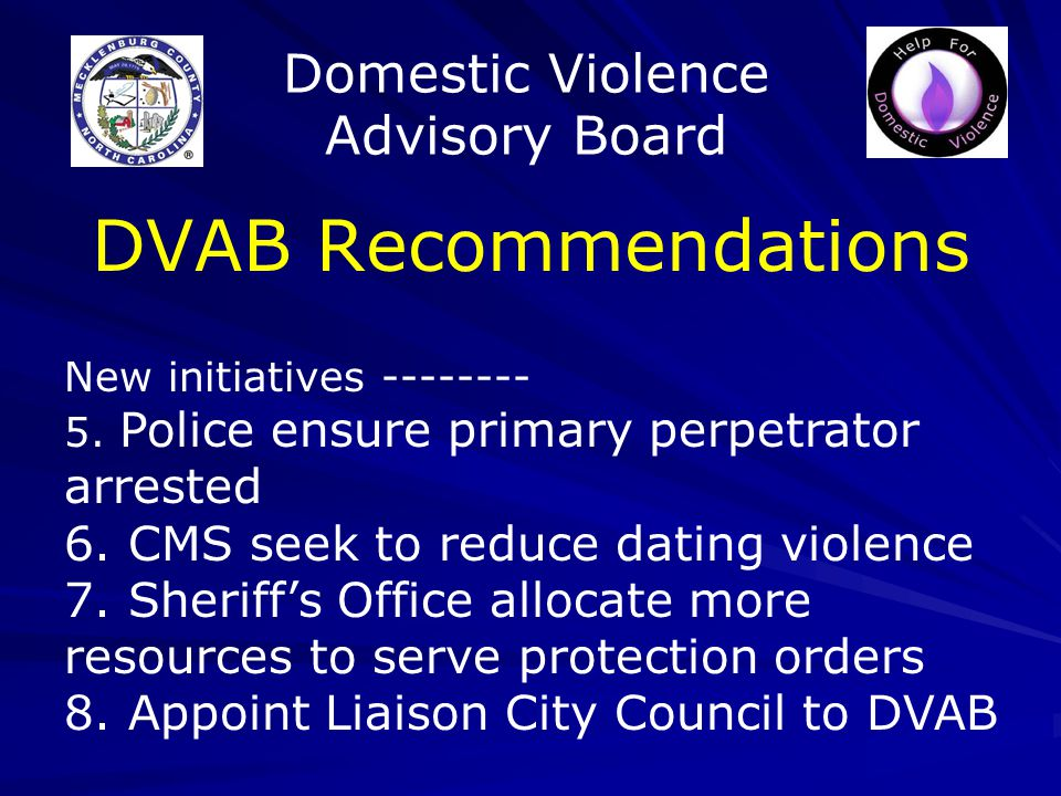 Domestic Violence Advisory Board DVAB Recommendations New initiatives -------- 5.