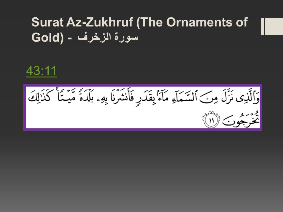 Surat Az-Zukhruf (The Ornaments of Gold) - سورة الزخرف 43:11