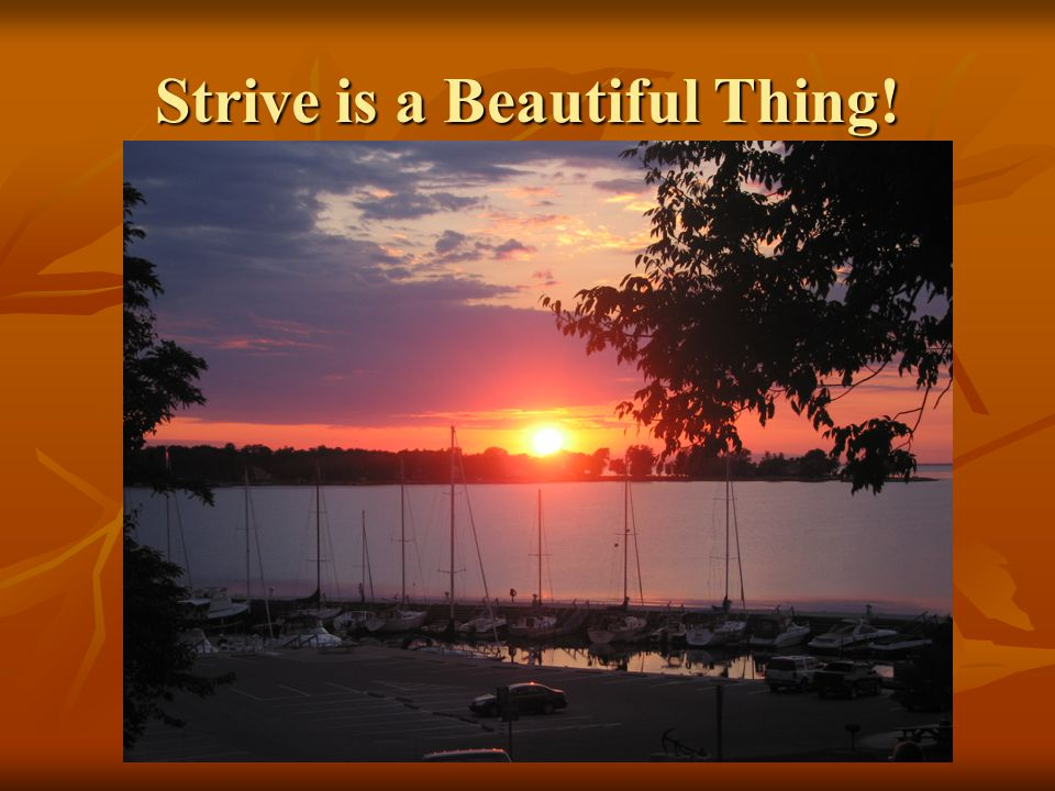 Strive is a Beautiful Thing!