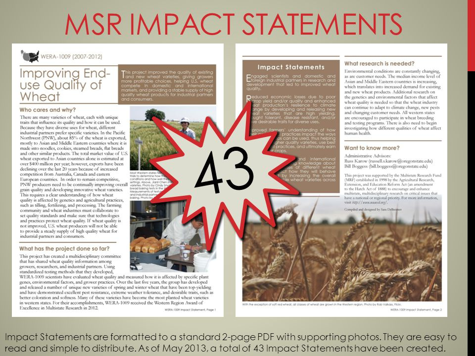 MSR IMPACT STATEMENTS 43 Impact Statements are formatted to a standard 2-page PDF with supporting photos.