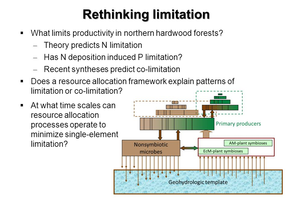 Rethinking limitation What limits productivity in northern hardwood forests? Theory predicts N limitation Has N deposition induced P limitation? Recen