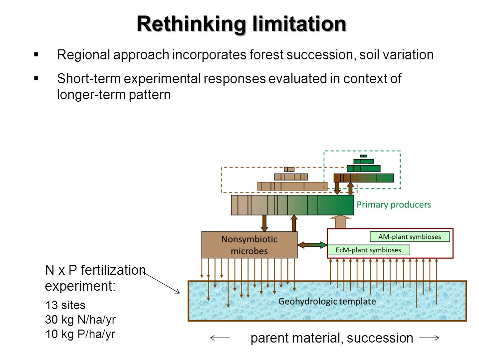 Rethinking limitation Regional approach incorporates forest succession, soil variation Short-term experimental responses evaluated in context of longer-term pattern N x P fertilization experiment: 13 sites 30 kg N/ha/yr 10 kg P/ha/yr parent material, succession