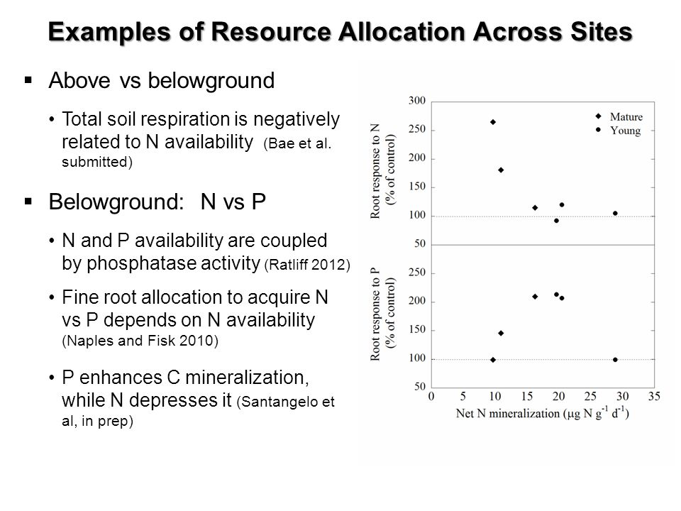Examples of Resource Allocation Across Sites Above vs belowground Total soil respiration is negatively related to N availability (Bae et al.