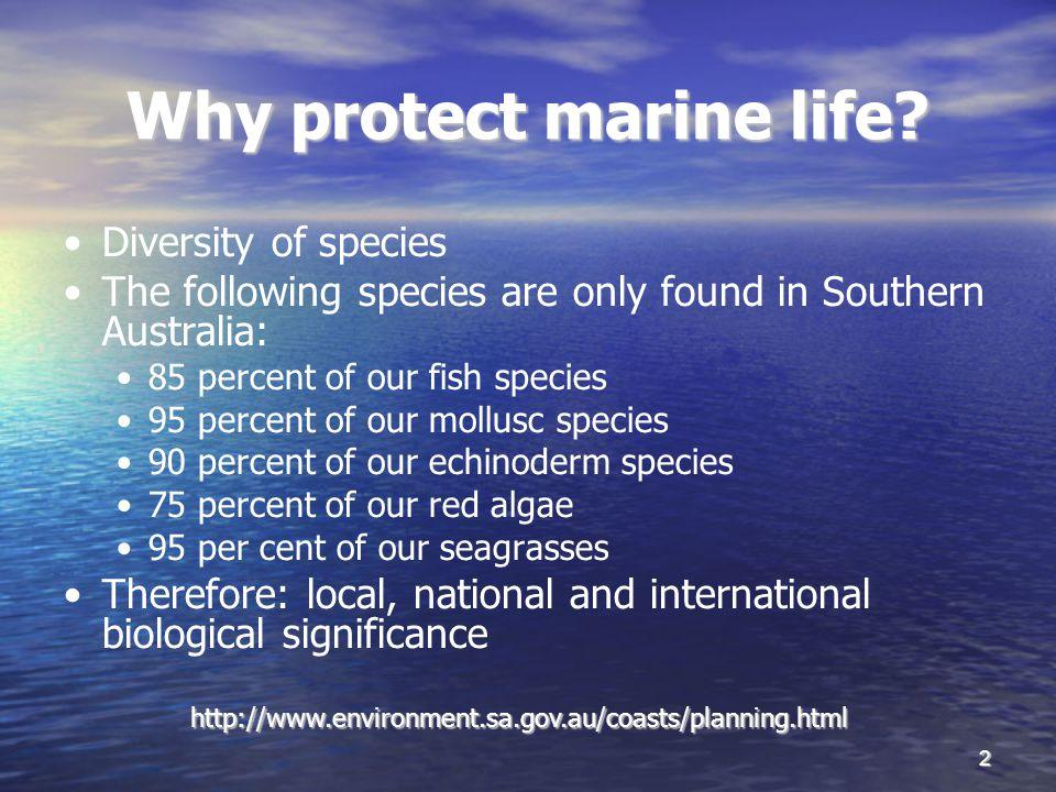 2 Why protect marine life.