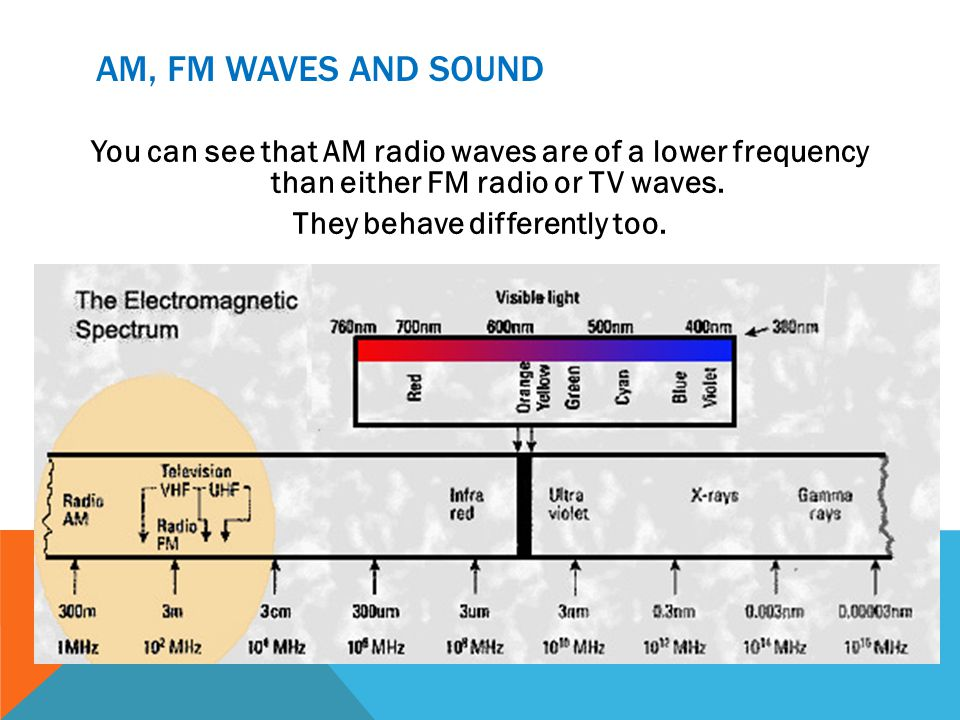 AM, FM WAVES AND SOUND You can see that AM radio waves are of a lower frequency than either FM radio or TV waves.