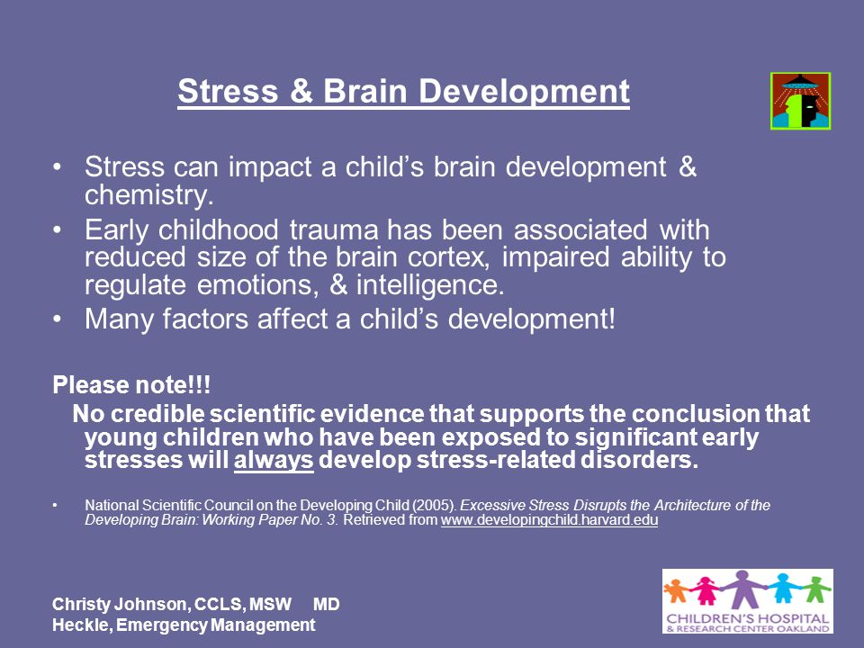 research paper on brain development in early childhood