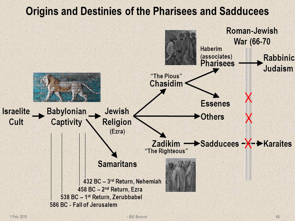 Origins and Destinies of the Pharisees and Sadducees - Bill Brewer 66 1 Feb 2010 Essenes Roman-Jewish War (66-70 Samaritans Rabbinic Judaism 432 BC – 3 rd Return, Nehemiah 538 BC – 1 st Return, Zerubbabel 458 BC – 2 nd Return, Ezra 586 BC - Fall of Jerusalem Chasidim The Pious Pharisees Haberim (associates) SadduceesZadikim The Righteous Israelite Cult Babylonian Captivity Jewish Religion (Ezra) Others Karaites