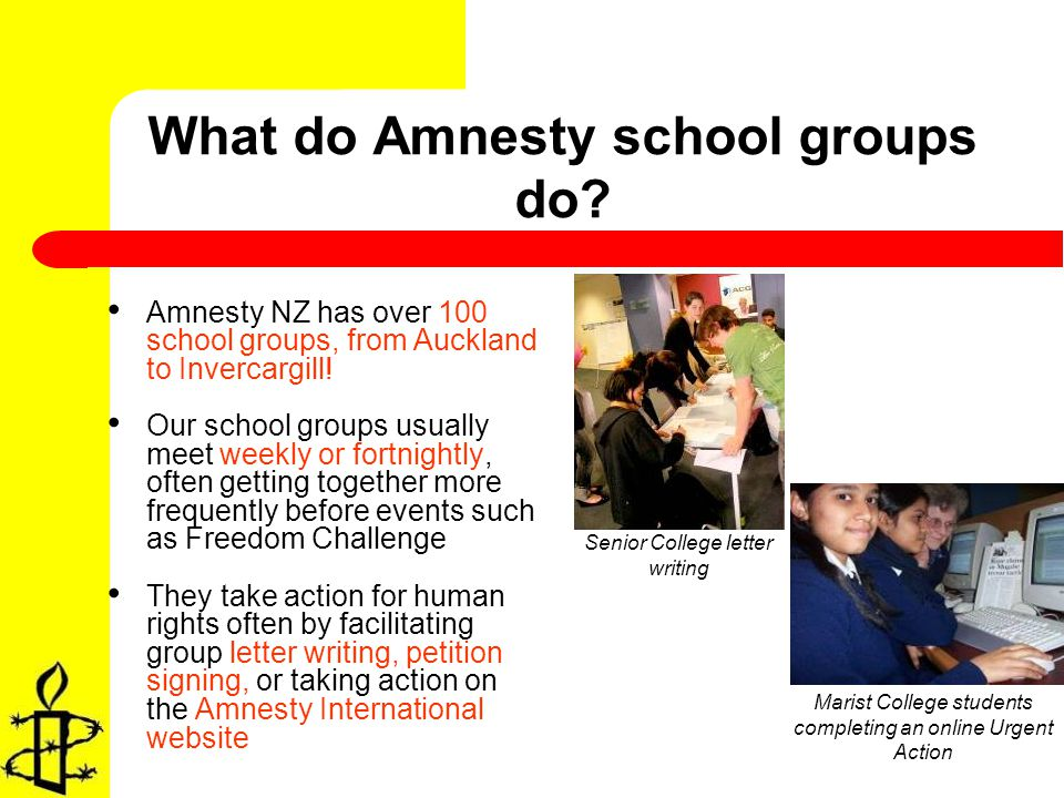 What do Amnesty school groups do.
