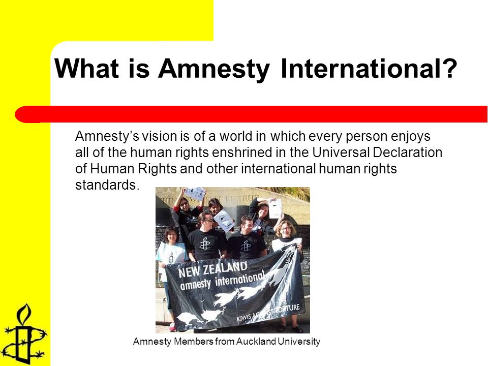 Amnestys vision is of a world in which every person enjoys all of the human rights enshrined in the Universal Declaration of Human Rights and other international human rights standards.