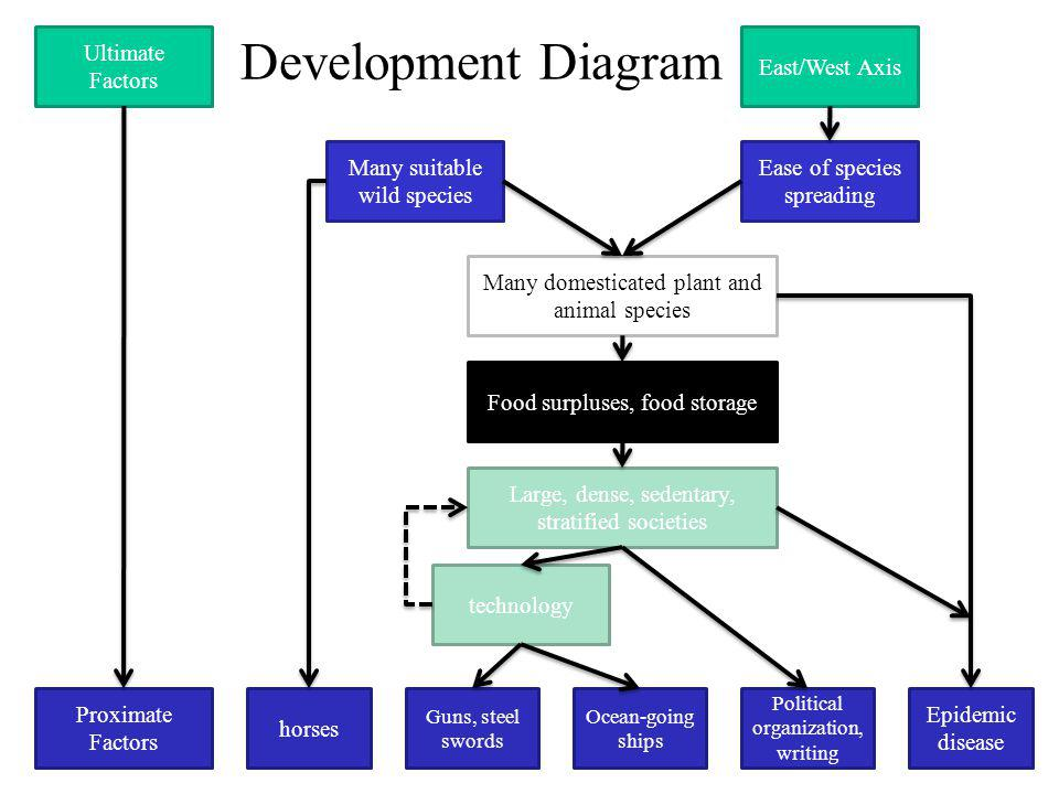 Development Diagram Ultimate Factors Proximate Factors East/West Axis Ease of species spreading Many suitable wild species Many domesticated plant and