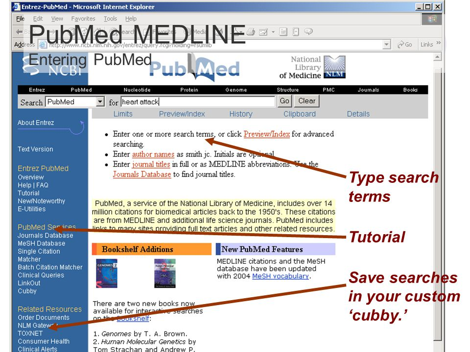 Type search terms Tutorial Save searches in your custom cubby. PubMed MEDLINE Entering PubMed