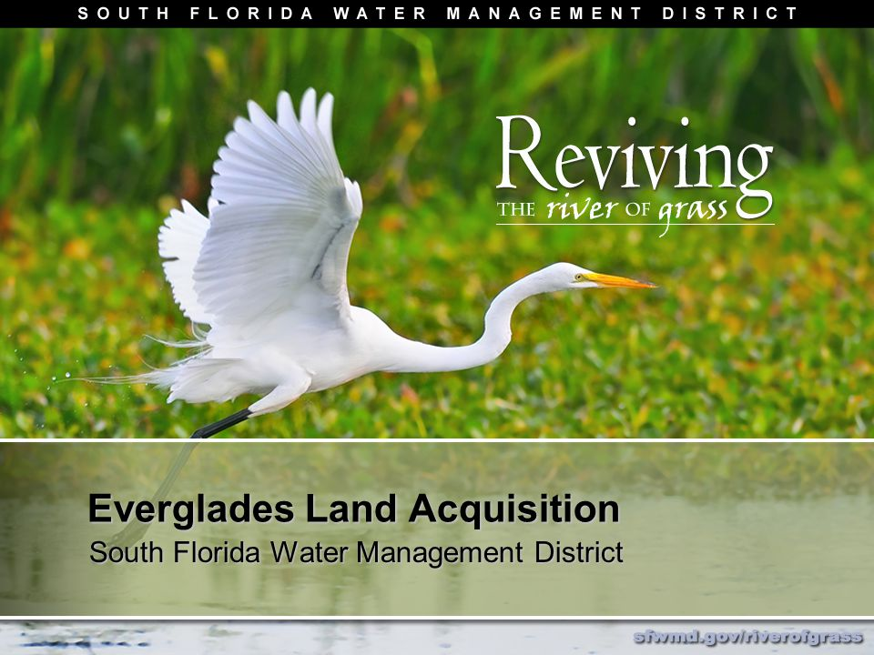 Everglades Land Acquisition South Florida Water Management District