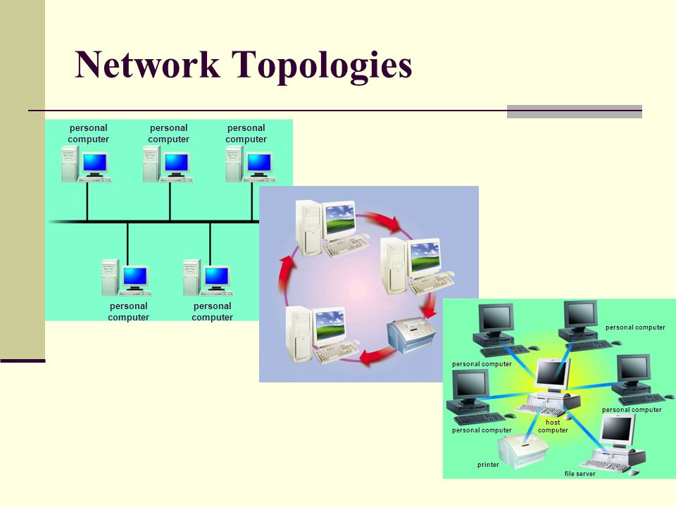 Network Topologies personal computer host computer printer file server personal computer