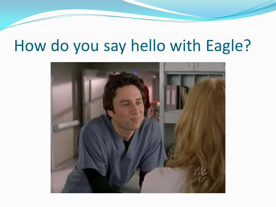 How do you say hello with Eagle?