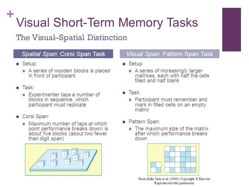 + Visual Short-Term Memory Tasks Setup: A series of wooden blocks is placed in front of participant Task: Experimenter taps a number of blocks in sequ