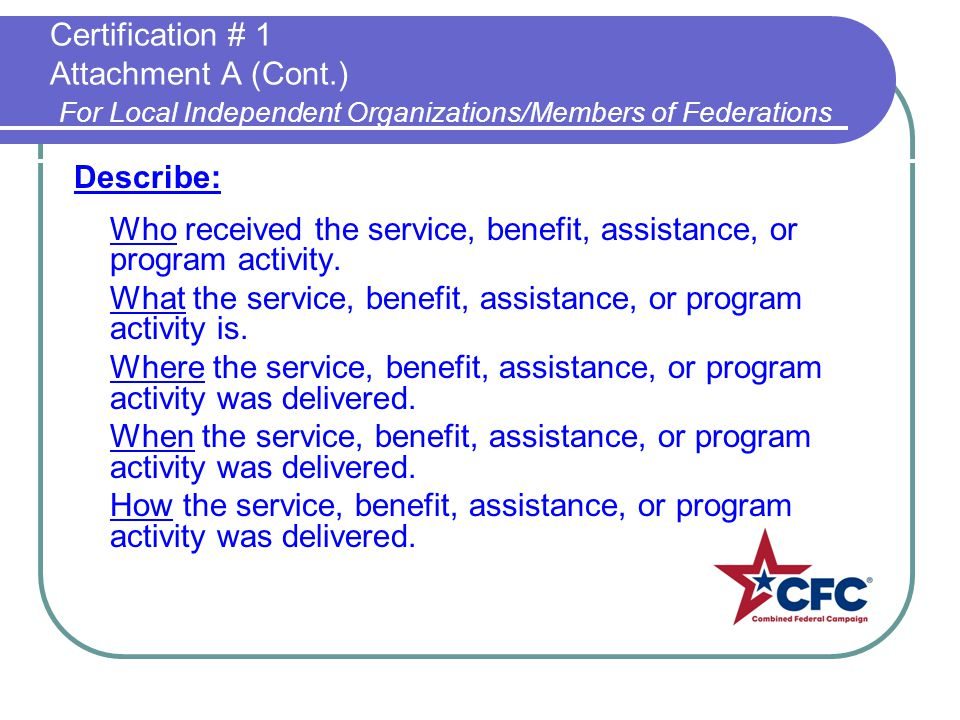 Describe: Who received the service, benefit, assistance, or program activity.