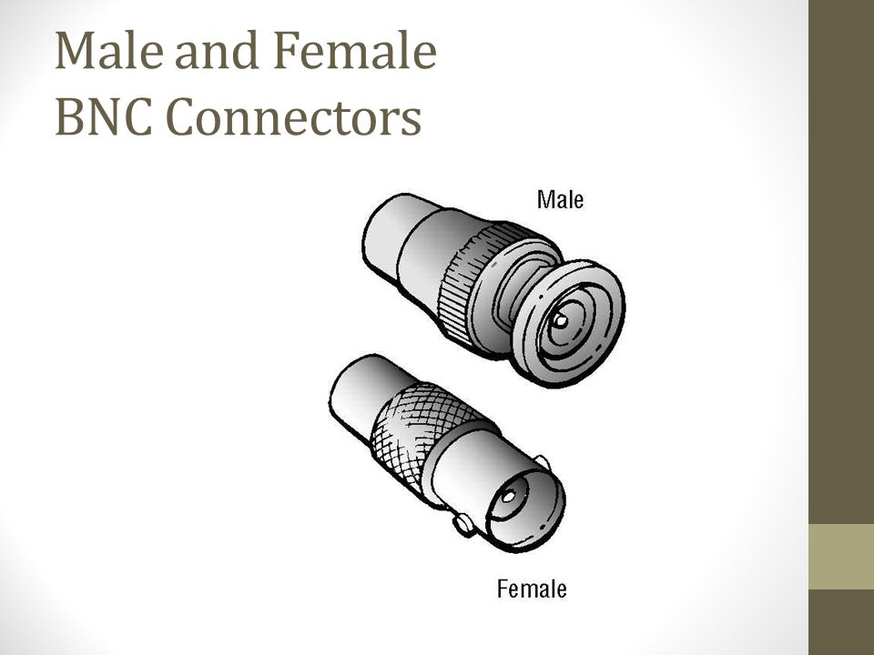 Male and Female BNC Connectors