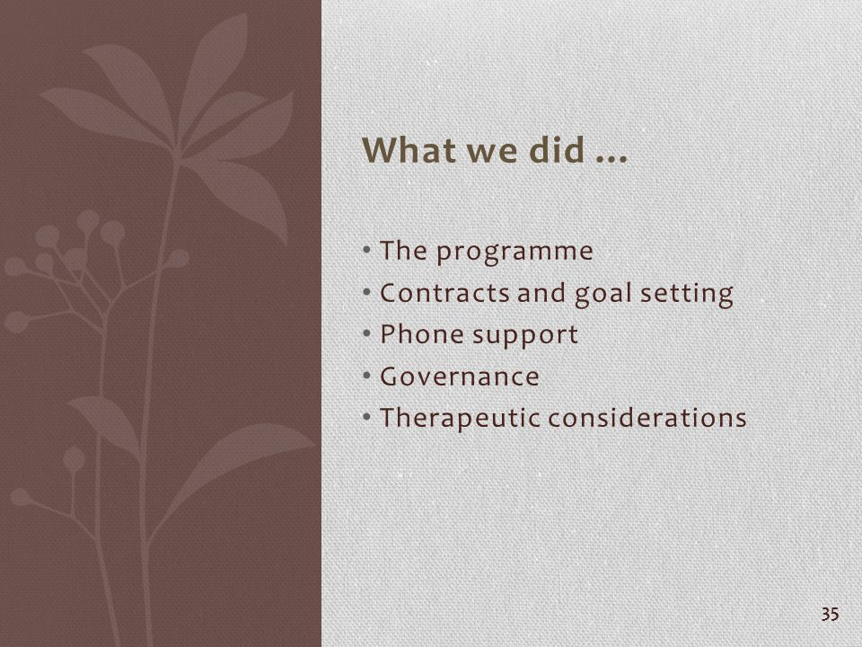 What we did … The programme Contracts and goal setting Phone support Governance Therapeutic considerations 35