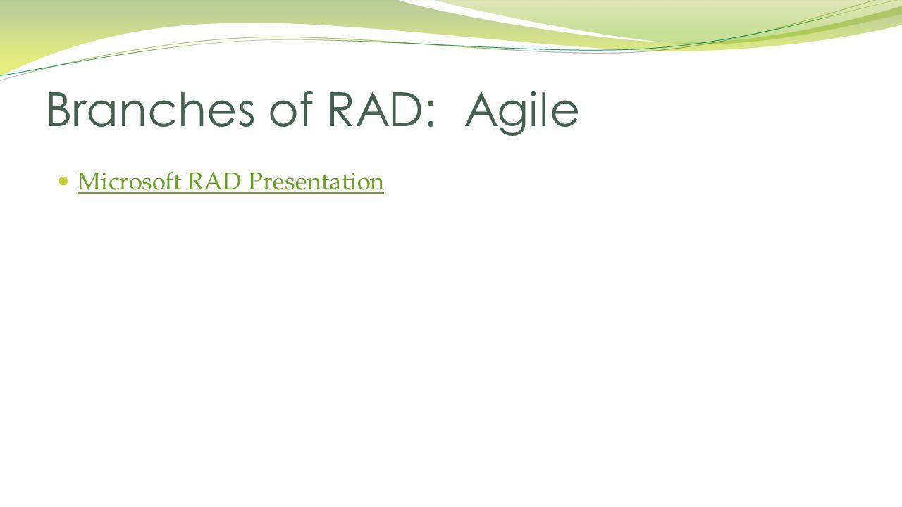 Microsoft RAD Presentation Branches of RAD: Agile