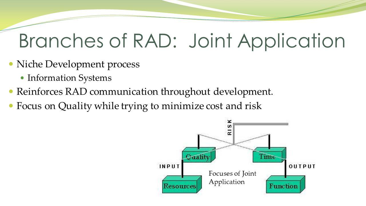 Niche Development process Information Systems Reinforces RAD communication throughout development.
