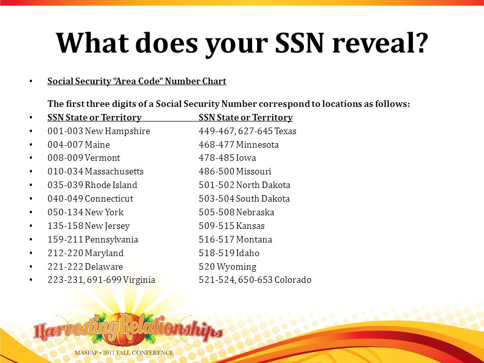 What does your SSN reveal.