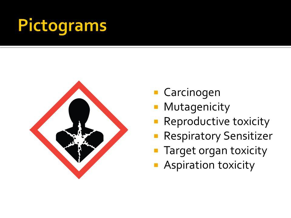 Carcinogen Mutagenicity Reproductive toxicity Respiratory Sensitizer Target organ toxicity Aspiration toxicity