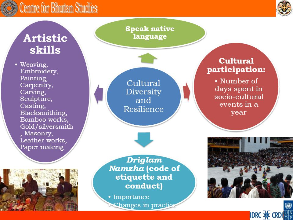 Cultural Diversity and Resilience Cultural participation: Number of days spent in socio-cultural events in a year Speak native language Artistic skill
