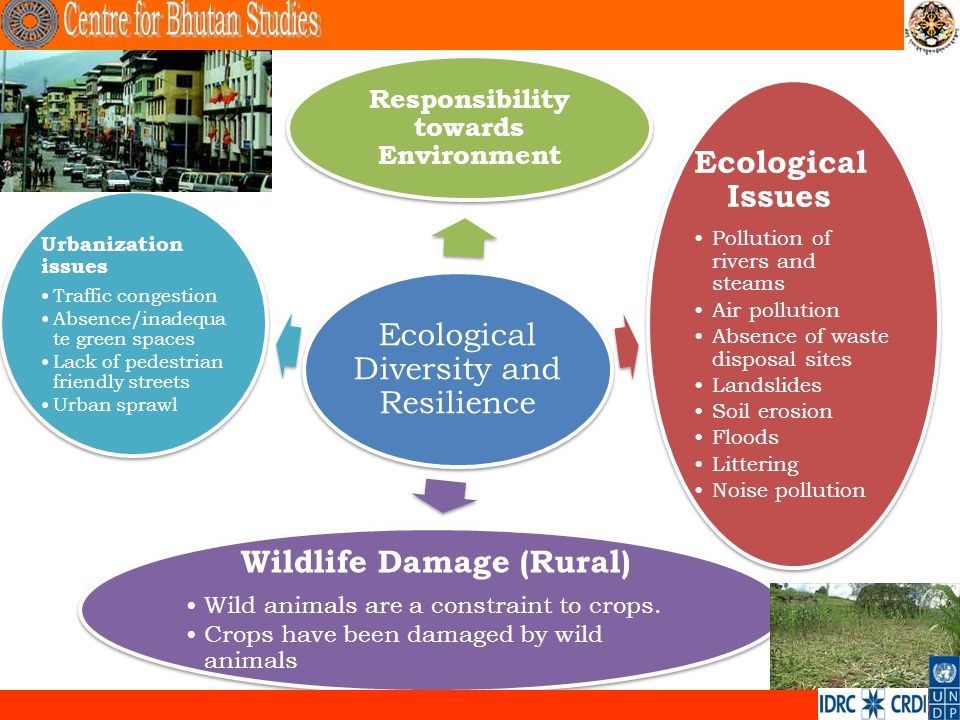 Ecological Diversity and Resilience Ecological Issues Pollution of rivers and steams Air pollution Absence of waste disposal sites Landslides Soil ero