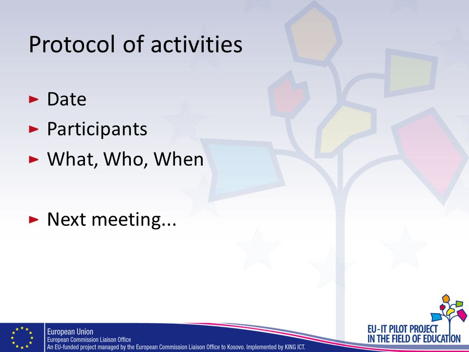Protocol of activities Date Participants What, Who, When Next meeting...