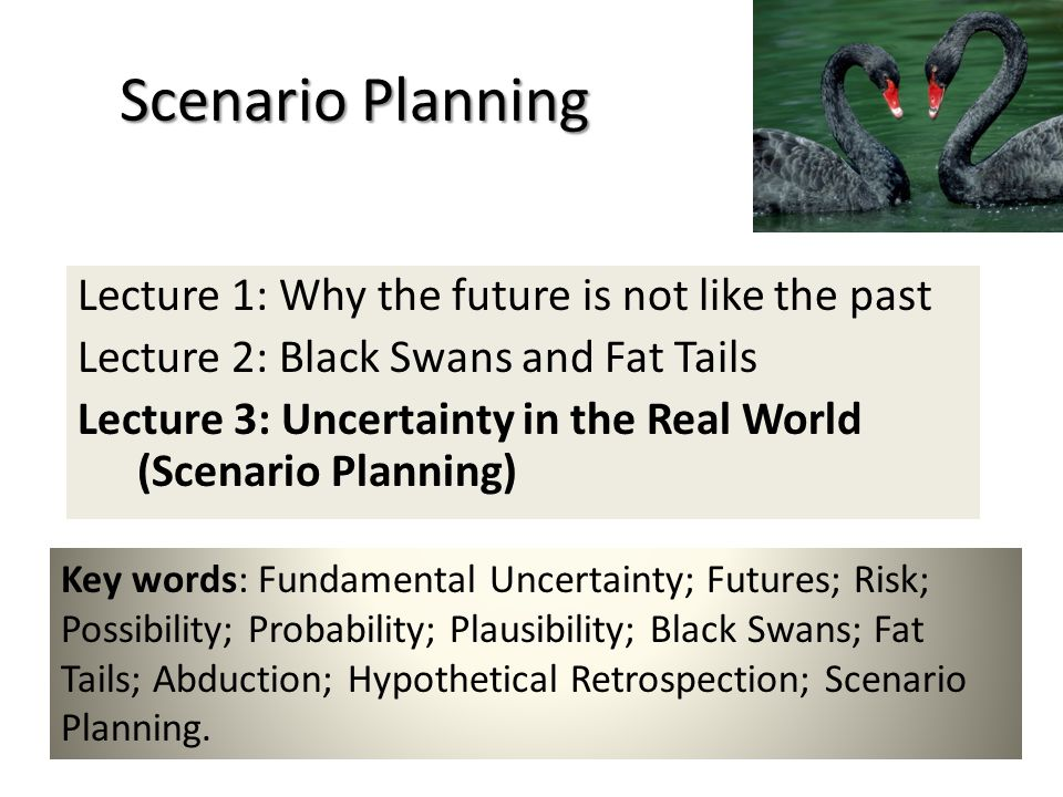 Scenario Planning Lecture 1: Why the future is not like the past Lecture 2: Black Swans and Fat Tails Lecture 3: Uncertainty in the Real World (Scenario Planning) Key words: Fundamental Uncertainty; Futures; Risk; Possibility; Probability; Plausibility; Black Swans; Fat Tails; Abduction; Hypothetical Retrospection; Scenario Planning.