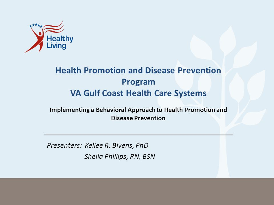 Presenters: Kellee R. Bivens, PhD Sheila Phillips, RN, BSN Health Promotion and Disease Prevention Program VA Gulf Coast Health Care Systems Implement