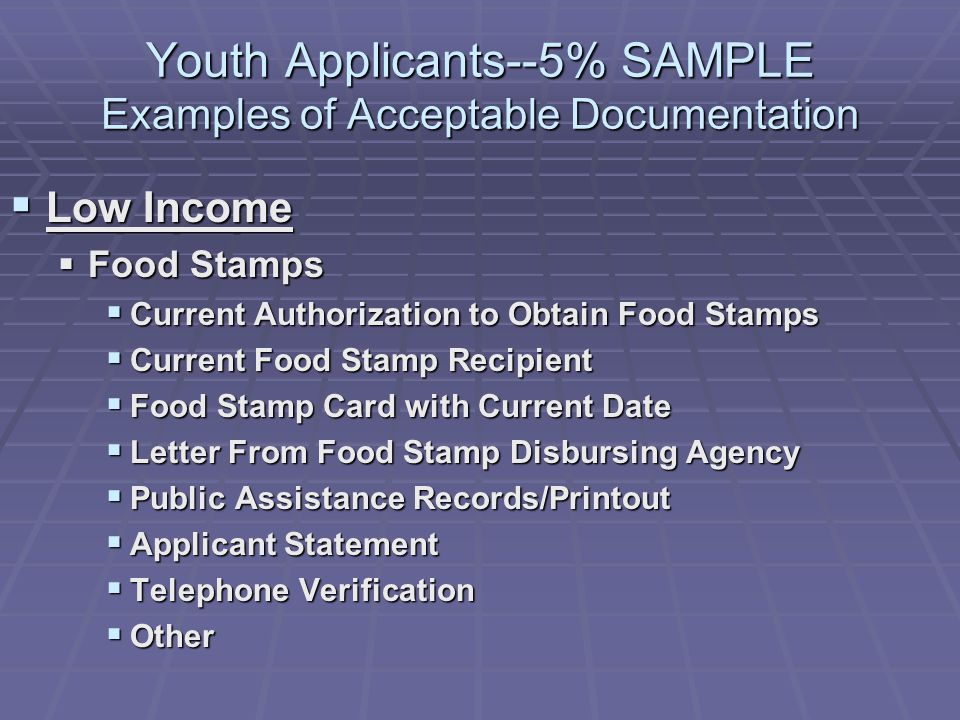 Youth Applicants--5% SAMPLE Examples of Acceptable Documentation Low Income Low Income Food Stamps Food Stamps Current Authorization to Obtain Food Stamps Current Authorization to Obtain Food Stamps Current Food Stamp Recipient Current Food Stamp Recipient Food Stamp Card with Current Date Food Stamp Card with Current Date Letter From Food Stamp Disbursing Agency Letter From Food Stamp Disbursing Agency Public Assistance Records/Printout Public Assistance Records/Printout Applicant Statement Applicant Statement Telephone Verification Telephone Verification Other Other